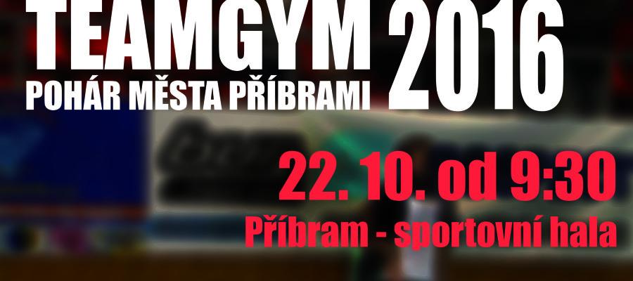 TeamgymPribramPlakat2016