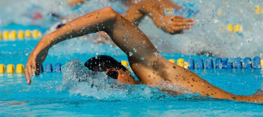 swim-courses